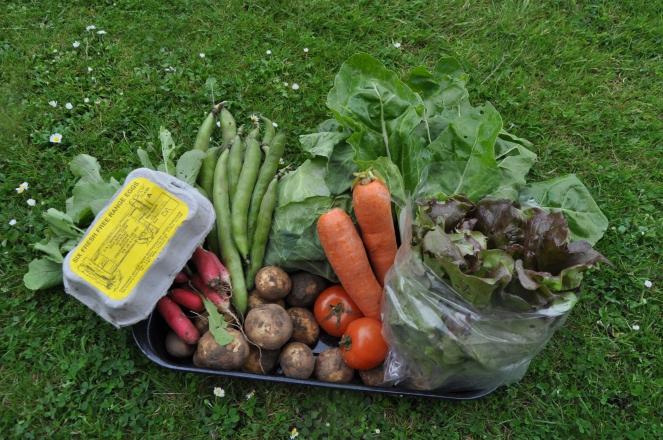 Organic vegetable box.