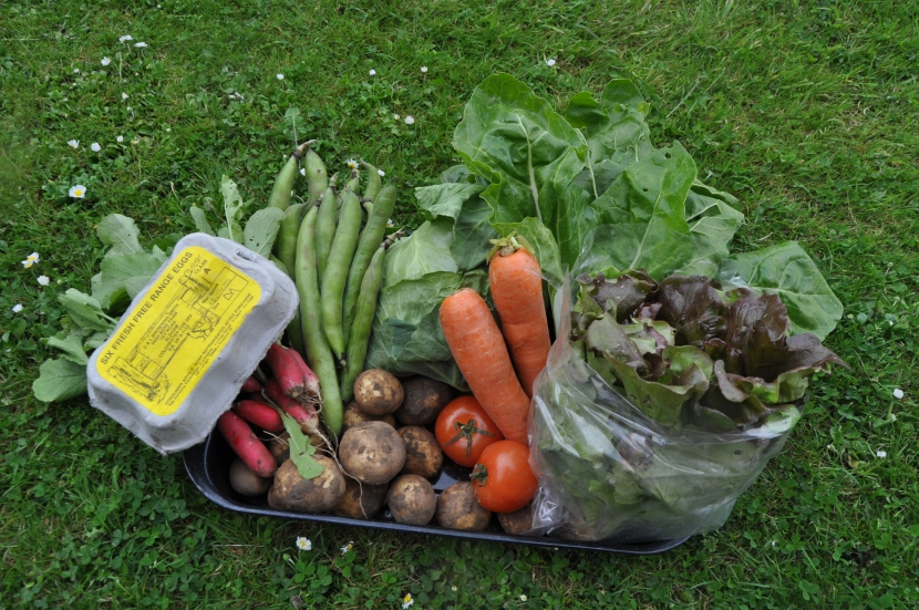 Organic vegetable box.